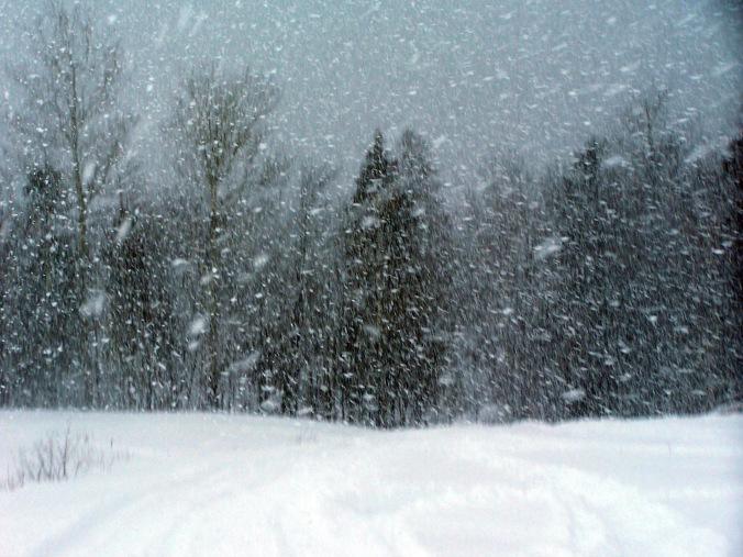 snowstorm-1359458